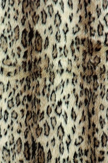 Singo Collection Cheetah Area Rug